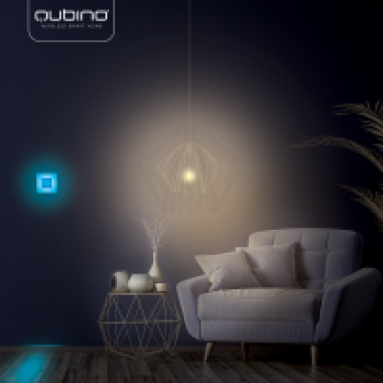 Luxy Smart Switch Qubino